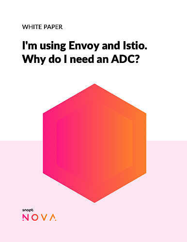 snapt-white-paper-im-using-envoy-and-istio-why-do-i-need-an-adc-thumbnail
